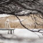 31-01-2013_Изображение 746-min